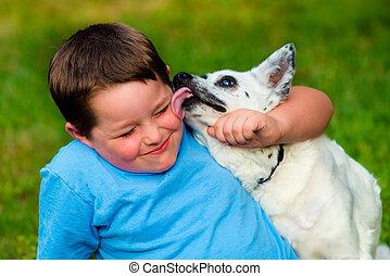 Glücklicher Junge, der von seinem Hund geleckt wird.