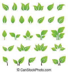 Grüne Blätter, Designelemente
