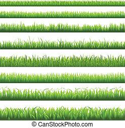 Grüne Grasgrenze