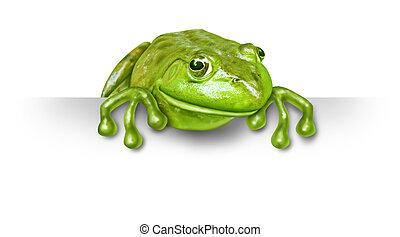 Grüner Frosch mit einem leeren Schild.