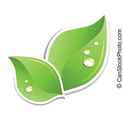 Grünes Blatt mit Wassertropfen. Vector