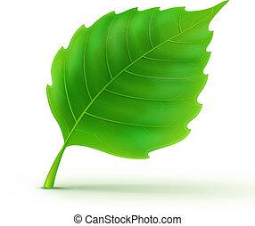 Grünes Detailblatt