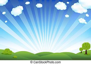 Grünes Feld und blauer Himmel.