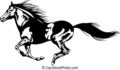 Graues Pferd.