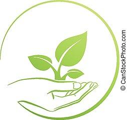 Hand Holding Pflanze, Logo-Konzept.