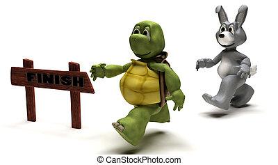 hase, rennen, metapher, schildkröte