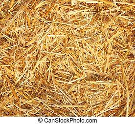 Hay,straw