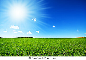 hell blau, frisch, himmelsgewölbe, gras, grün