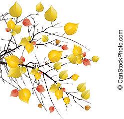Herbstbaum-Hintergrund