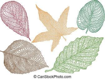 Herbstblätter, Vektor