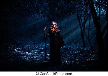 hexe, wald, nacht