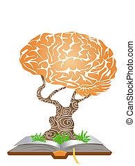 Hirnbaum auf Buch