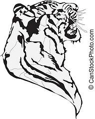 Kampf der Tiger