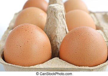 kasten, eier, karton