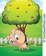kirschen, unterhalb, baum, trainieren, schwein