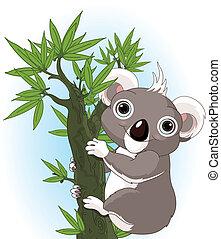 koala, reizend, baum