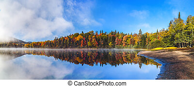 landschaftsbild, herbst, angenehm, warm, landschaftlich, panorama, wald, prächtig, sonnenschein.