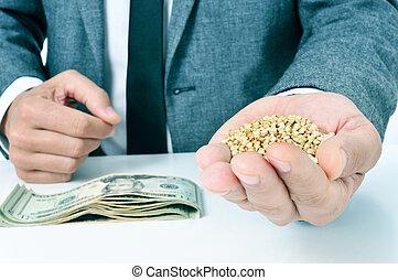 landwirtschaft, begriff, dollar, banknoten, samen, buchweizen, darstellen