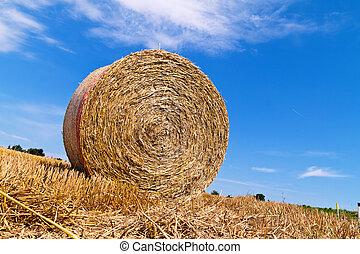 Landwirtschaft. Box mit Strohballen