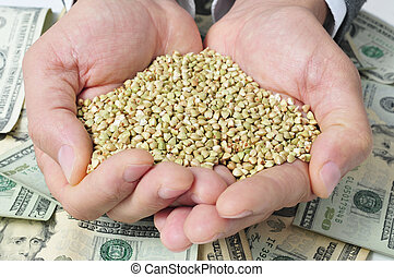 landwirtschaft, dollar, banknoten, samen, buchweizen, darstellen