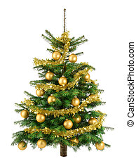 Lush Christmas tree with gold baubles.