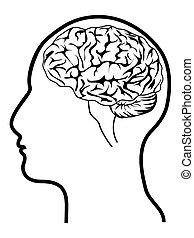 Menschlicher Kopf mit Gehirn.
