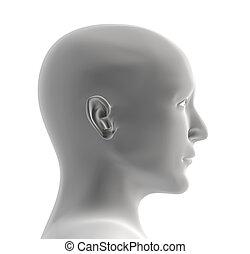 Menschlicher Kopf mit grauer Farbe