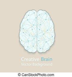 Menschliches Gehirn.