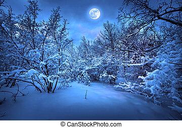 mondschein, holz, winternacht