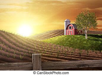 Morgen auf der Farm