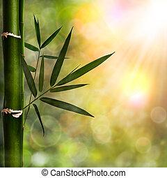 Natürlichen Hintergrund mit Bambusfoliage abbrechen