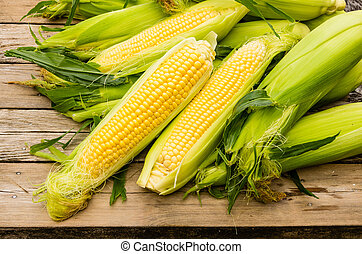 Ohren aus frisch gelbem Mais