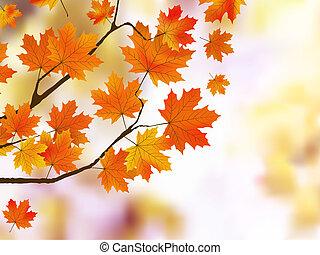 Orange Herbstblätter, flacher Fokus.