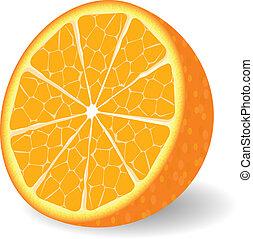 orange, vektor, fruechte