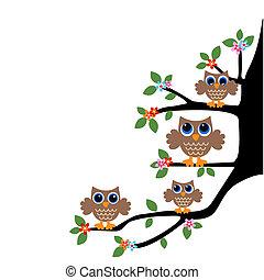 Owl-Familienteam