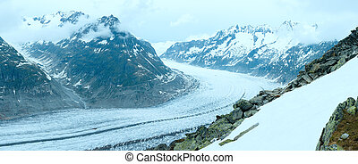 panorama., (bettmerhorn, switzerland), groß, gletscher, aletsch