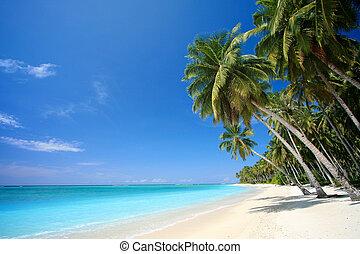 Perfekter tropischer Inselparadies-Strand