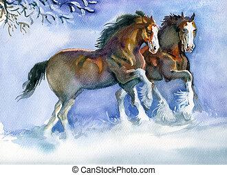 Pferde rennen im Winter