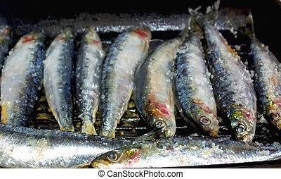 Portugiesische Sardinen.