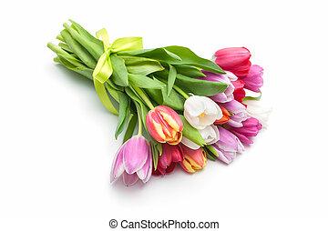 Posy der Frühlingstulpenblumen.