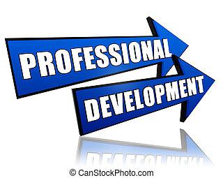 Professionelle Entwicklung bei Pfeilen