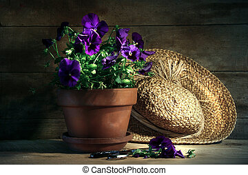 Purple Pansies mit altem Strohhut