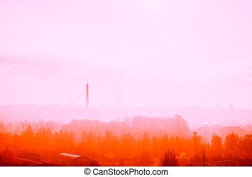 raum, herbst, hintergrund, morning., wald, nebel, kopie, jahreszeiten