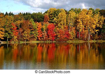 Reflexionen des Herbstes
