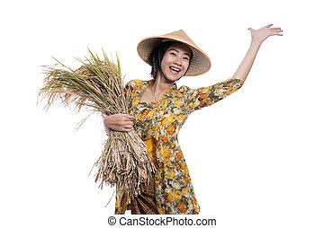reis, aus, asiatisch, landwirt, korn, hand, weißes, freigestellt