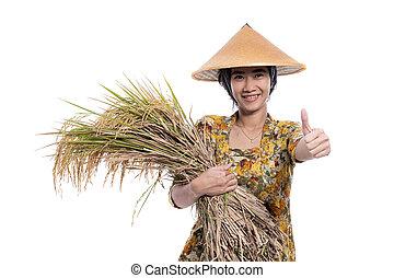 reis, korn, daumen, ausstellung, besitz, landwirt, auf