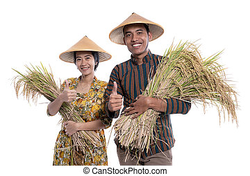 reis, traditionelle , fotoapperat, weiblicher asiat, landwirt, paddy, korn, hand, lächeln, mann
