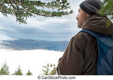 reisender, berge, verschneiter