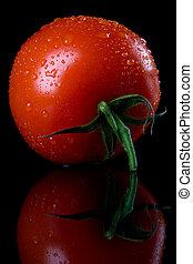 Rohe Tomate im schwarzen Hintergrund