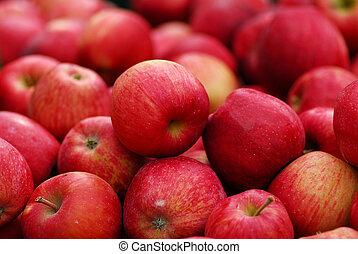 Roter, köstlicher Apfel.